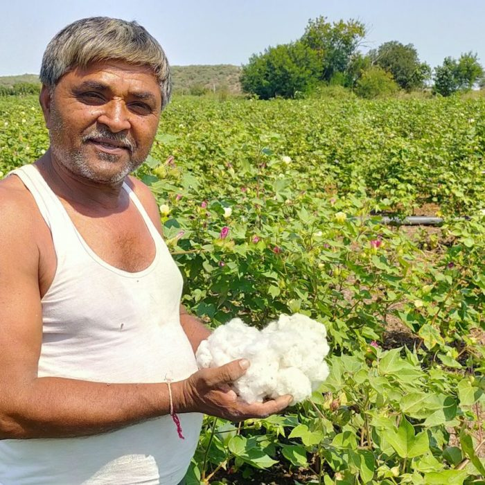BEEMA-BHAI-IN-HIS-COTTON-FIELD-scaled