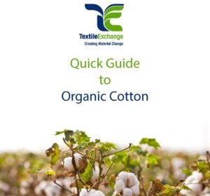 Quick Guide to Organic Cotton 1