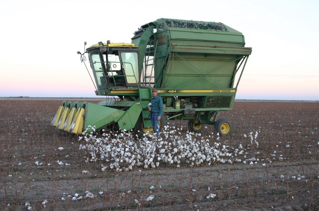 CONVENTIONAL TO TRANSITIONAL TO ORGANIC TO REGENERATIVE ORGANIC COTTON: HOW MUCH COTTON DOES IT TAKE? 2