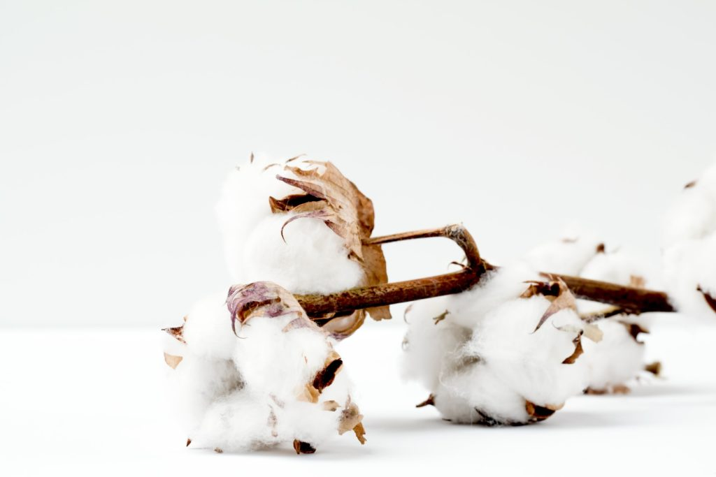 Record Organic Cotton Production in 2019/20, Shows Textile Exchange Report 1